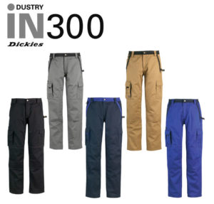DICKIES Bundhose-IN30030